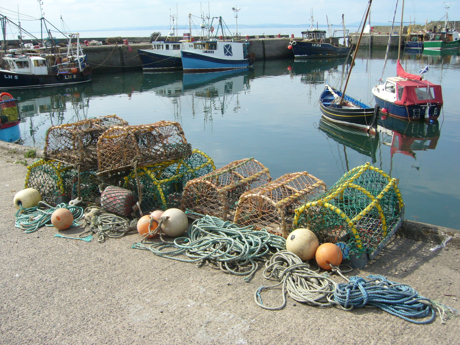 Lobster creels at port, live Maine lobster delivery