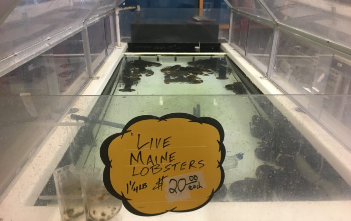 Live Maine lobsters, live lobster price