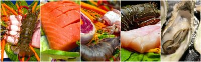 best place to buy seafood online
