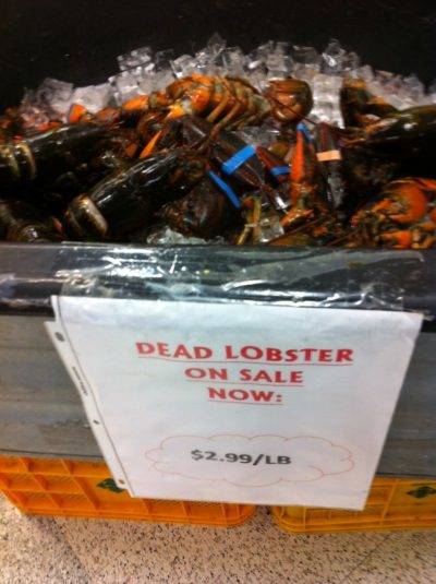 cheap lobster, dead lobster on sale