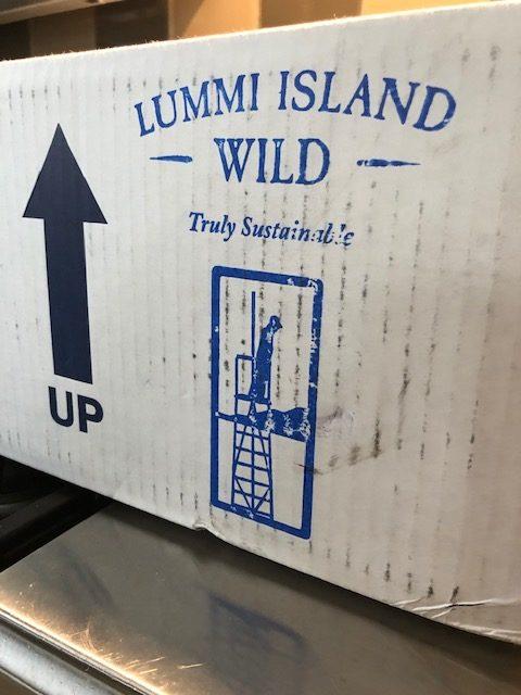 lummi island wild salmon