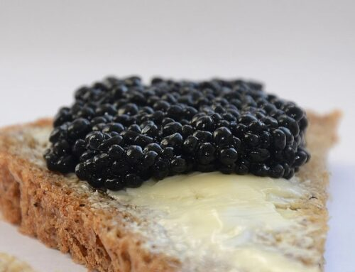 Hunting for the Best Caviar Online? Here's What Makes the Best Buy